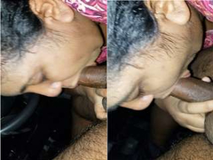 Sexy NRI Bhabhi Connected with Blowjob To Deaver On the top of car