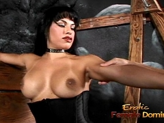Dominate tranny hottie Foxxy makes a rafter lick her latex boots